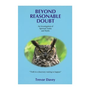 Beyond Reasonable Doubt - Trevor Davey