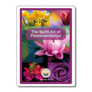 The Spirit Art of Flowersentience