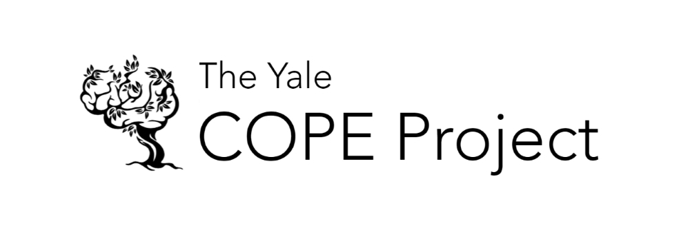 COPE Project Launch